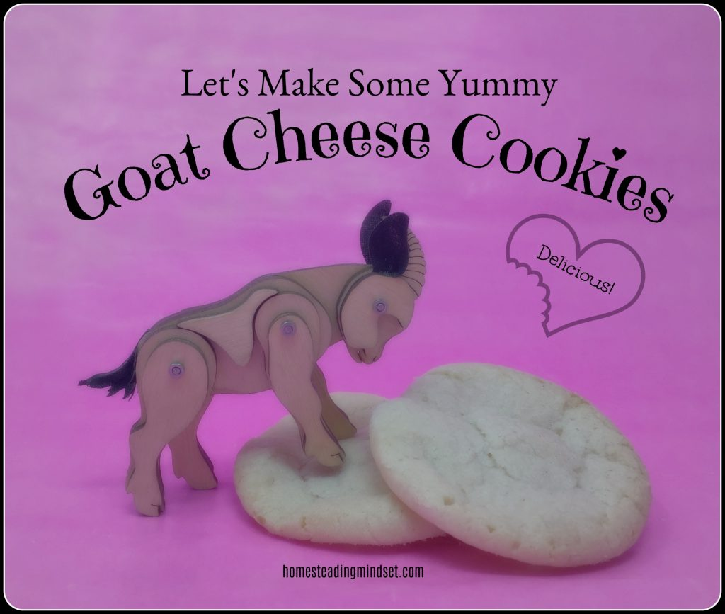 Goat Cheese Cookies / homesteadingmindset.com